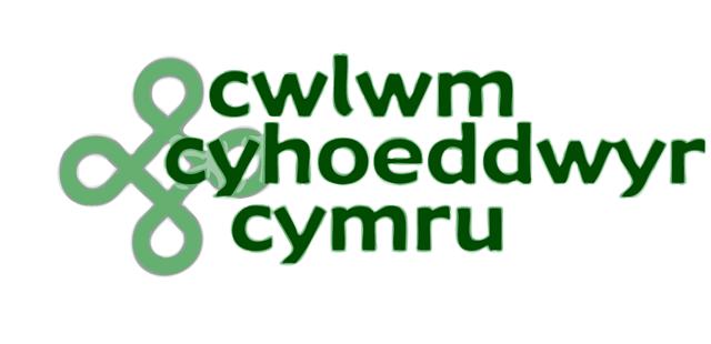 logo-cwlwm
